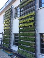 Großstadt-Dschungel neu definiert: Mit cityLam werden Häuserfassaden zu grünen Luftreinigern