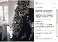 Break the Internet Kris and Kylie: Kardashians in Onepiece