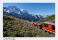 Swiss-Domain: Wo .Swiss drufstaht, isch ganz sicher au Schwiiz drin!