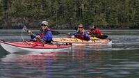 USA- und Kanada-News 2016: Wilderness oder Countryfeeling, Urban Flair oder Beachlife