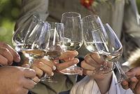 Eine Reise zum Wein: Wein-Gourmet-Tour im Märchenhotel!