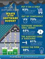 Flexera Software Report: Einsparungspotentiale bei Software nicht genutzt
