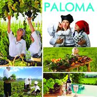 PALOMA Hotels stellt sich den Herausforderungen des Bio Trends erfolgreich