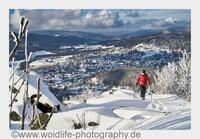 Natur pur - Wintersport in Bodenmais