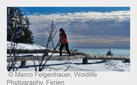 Langlauf in der Ferienregion: Schnee erleben im Bayerwald