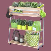 """""""Urban & Country Gardening"""" zu jeder Jahreszeit"""