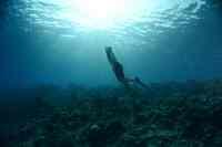 Freitauch-Weltmeister Christian Redl unterrichtet beim 5. Underwater Festival des LUX* South Ari Atoll auf den Malediven