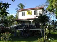 Unterwegs im südamerikanischen Suriname: Zwischen kolonialen Herrenhäusern und Hängematte