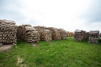 Regionaler Brennholzverkauf - Abholung oder Lieferung