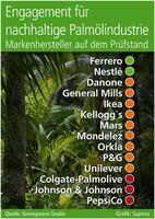 Engagement für nachhaltige Palmölindustrie