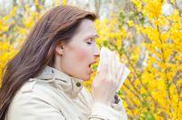 Allergisches Asthma besser kontrollieren