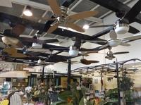 Casa Bruno Showroom für Deckenventilatoren jetzt noch grösser