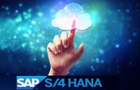 All for One Steeb AG - Carl Stahl GmbH von SAP ERP auf SAP S/4HANA / Großer Sprung nach vorne
