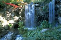 Anderson Japanese Gardens in Rockford feiert Saisoneröffnung