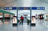 Die Panasonic AF1 Display-Serie weckt große Erwartungen in der Branche