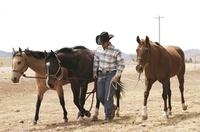 Texas: Viel mehr als nur Wilder Westen ...