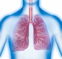 Innovation bei der Therapie von Asthma