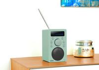 Portables Digital-Radio Clint Digital F4 im frischen Frühlingsdesign
