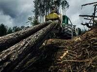 Neuer Nokian Logger King LS-2 Forstreifen für Skidder