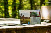 Wunderbare Wanderwege im Bayerwald