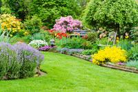 Fit für die Gartensaison: Rasen richtig säen
