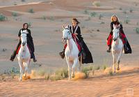 Reiten in Ras al Khaimah