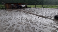 Unwetter fegt über den BDT-Gnadenhof in Weeze