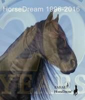 1996-2016: 20 Jahre HorseDream
