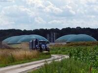 Ob Gas oder Strom, Biogas kanns!