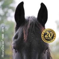 HorseDream Pro Business. Intensivseminar für Führungskräfte.