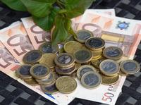 Feste Zinsen  effektiver Klimaschutz