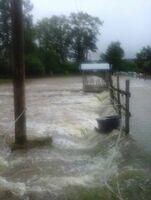 Gnadenhof Rhein-Hunsrück zum zweiten Mal von Unwettern heimgesucht