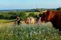 Einmalig in Deutschland: Ganz Schleswig-Holstein feiert das Naturgenussfestival!