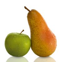 Nicht Äpfel mit Birnen vergleichen: Tipps bei der Suche nach Bestattern im Internet