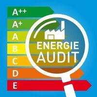 Energieaudit macht Verbräuche transparent