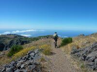 Zum Wandern und Biken nach Madeira
