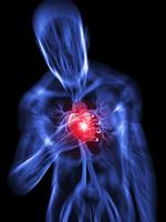 Deutsche Wissenschaftler erkennen im Urin Herzfehlfunktionen schon vor Auftreten von Symptomen