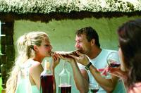 Die Rettung des Uhudlers - Wie ein Wein zum kulinarischen Star der Golf- & Thermenregion Stegersbach wurde