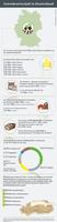 Infografik der AGRAVIS zur Getreidewirtschaft in Deutschland