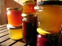 Marmaloo: Online-Marktplatz für selbstgemachte Marmelade startet Crowdfunding-Kampagne