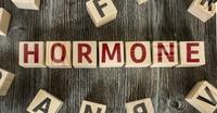 Arzt in Schwäbisch Gmünd: Wie wirken naturidentische Hormone?