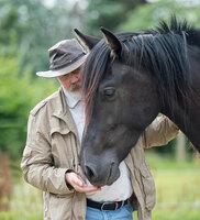 Crash-Kurs als Einstieg in die pferdegestützte Aus- und Weiterbildung
