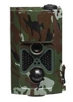 Jeder Schuss ein Treffer: Hightech-Kameras für die Wildbeobachtung
