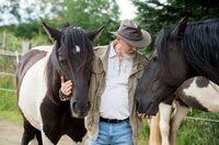 Pferdegestützte Personal- und Organisationsentwicklung