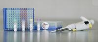 Früherkennung von Gebärmutterhalskrebs:  GynTect 2.0- breiteres Anwendungsspektrum durch größere Vielfalt verwendbarer Proben