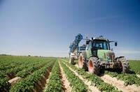 Lamb Weston: Vom Feld auf den Teller - die Reise der Kartoffel