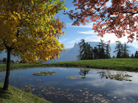 Endlich raus, endlich frische Luft: 365 Tage Wandern, Berggipfel & Kräuter im Hotel Tann****