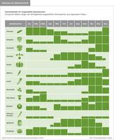 Gemüse im Jahresverlauf