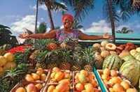 Neue karibische Aktivcocktails: wandern und radeln, entdecken und genießen