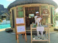 Das Kultgetränk Gin erobert die Welt - und Mauritius